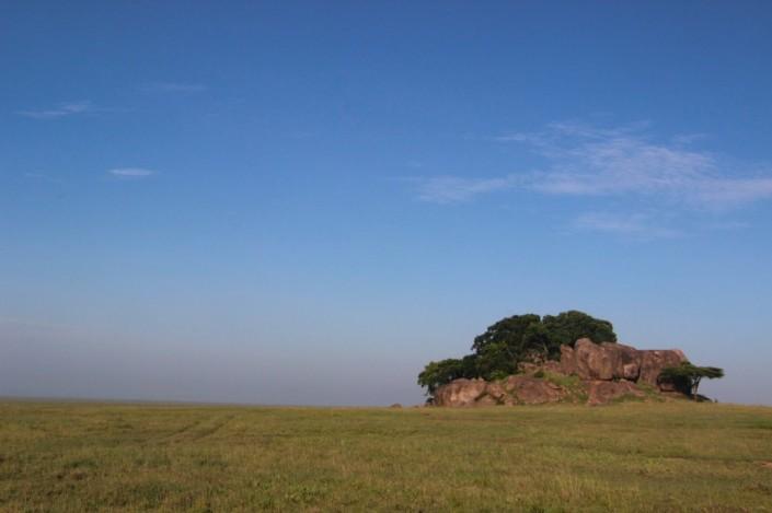 morning drive in remote Serengeti